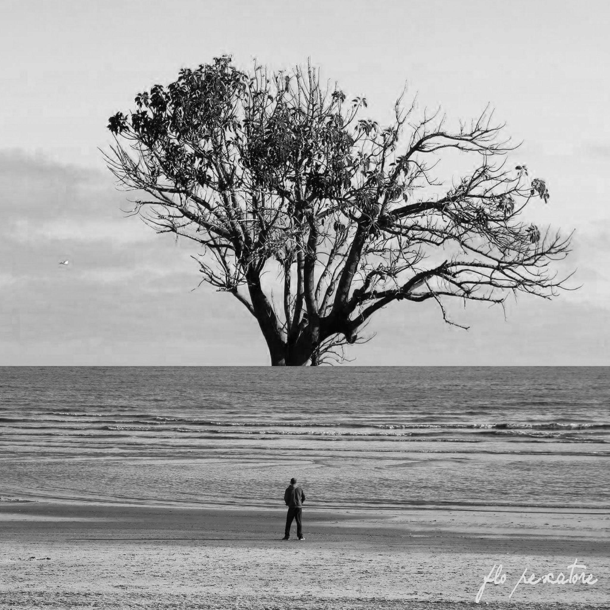 """Fotografía: """"Infinita expansión"""", por Florencia Pescatore"""